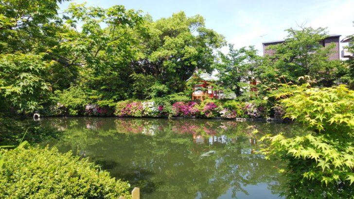神泉苑の池